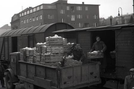Rok 1948: V Bratislave sa objavil nový typ obchodov - zelovoc