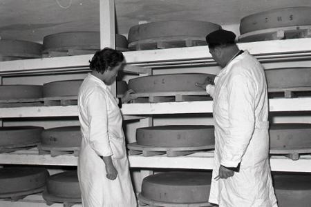 Rok 1962: Vyrobili prvý slovenský ementál