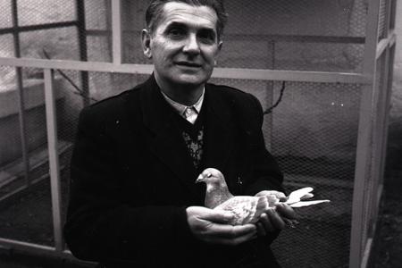 Rok 1965: Holuby z Kopčian vyhrávajú medzinárodné súťaže