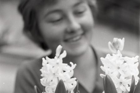 Rok 1964:Bratislavský ZARES zásobuje kvetmi viedenské obchody