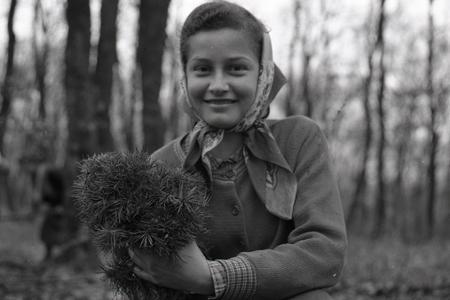 Rok 1957: Zväzáci zalesňujú okolie Smoleníc