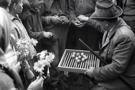 Rok 1962: V bažantici neďaleko Zvolena sa liahnu prvé bažanty