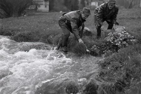 Rok 1966: Pri Ružomberku vyrástlo kráľovstvo rýb