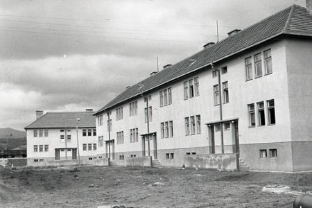 Rok 1950: Nové byty za 52 dní