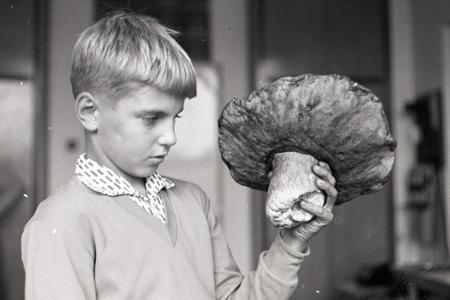 Rok 1964: Tohtoročná jeseň praje hubárom