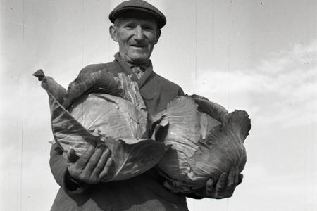 Rok 1956: Zohorská kapusta na ceste do Bratislavy