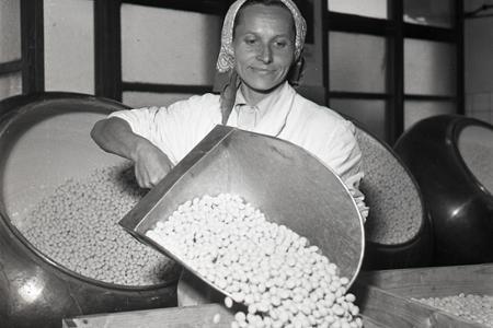 Rok 1953: Vianočných čokoládových kolekcií z DEVY bude dostatok