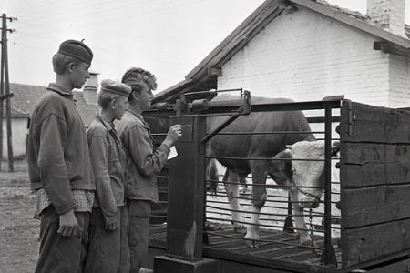 Rok 1959: BSP – výhonky komunizmu