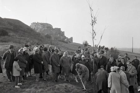 Rok 1968: Zasadili Strom republiky