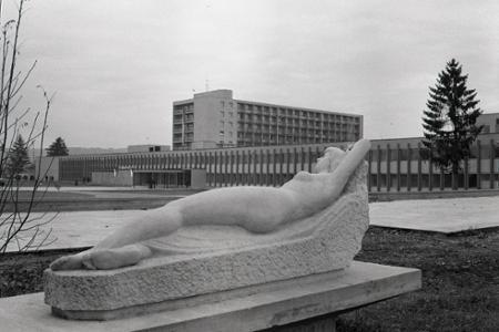 Rok 1970: V Dudinciach vybudovali najmodernejší čs. liečebný ústav