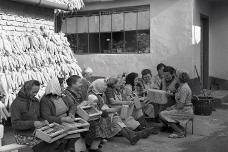 Rok 1965: Rekvalifikované ženy vyrábajú výrobky pre USA