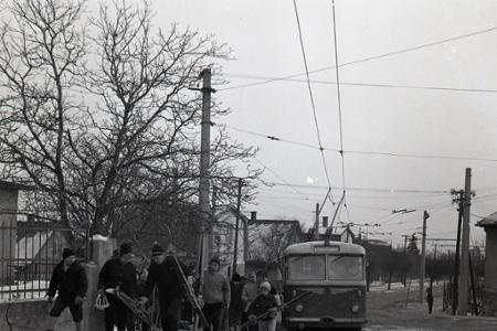 Rok 1963: Sánkovačka na Kolibe