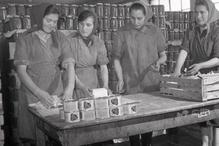 Rok 1974: Oravské kompóty na export