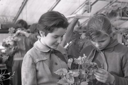 Rok 1963: Pionieri chystajú darčeky k MDŽ