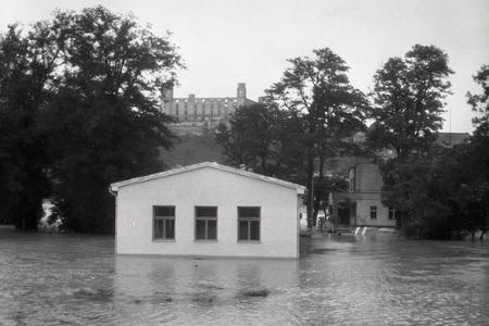 Rok 1954: Vody Dunaja zaplavili rozsiahle územie