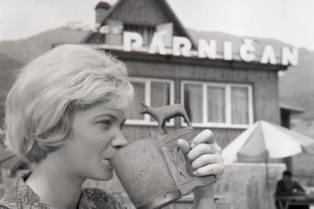 Rok 1966: Salaš Párničan