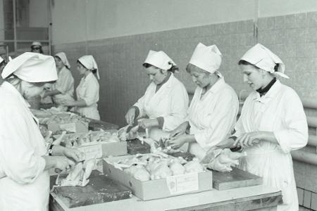 Rok 1976: Začína sa s výrobou hydinovej šunky
