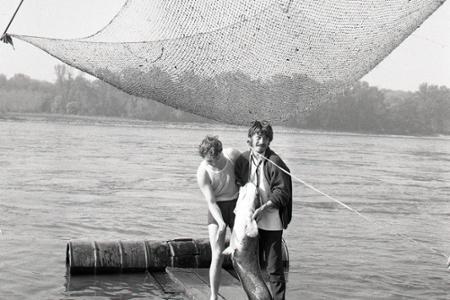 Rok 1968: Kapitálny úlovok z vôd Dunaja
