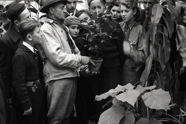 Rok 1953: Prvé celoštátne stretnutie mladých mičurincov - fotografie - Vtedy