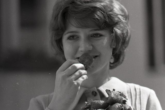 Na trh prichádzajú prvé jahody - fotografie - Vtedy