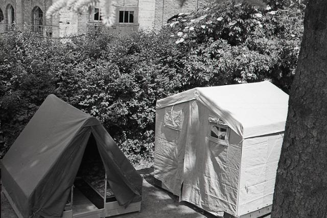 Rok 1959: Stany z Liptovského Mikuláša smerujú do Viedne - fotografie - Vtedy