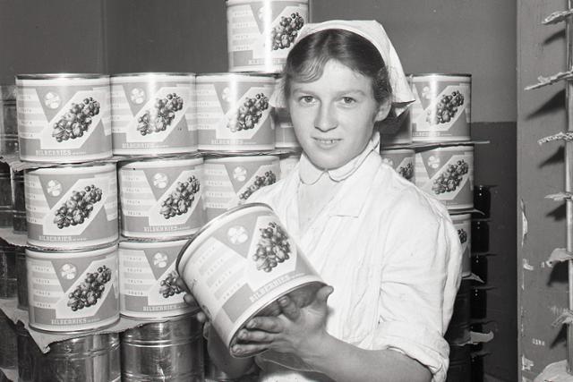 Rok 1958: Slovenské sušené huby idú na odbyt - fotografie - Vtedy